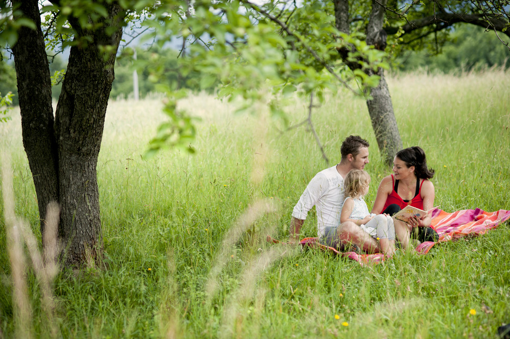 Happy family is playing together in a green meadow.