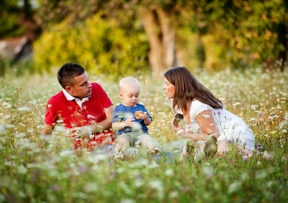 Happy family with little boy sitting on meadow in summer and eating homemade muffins