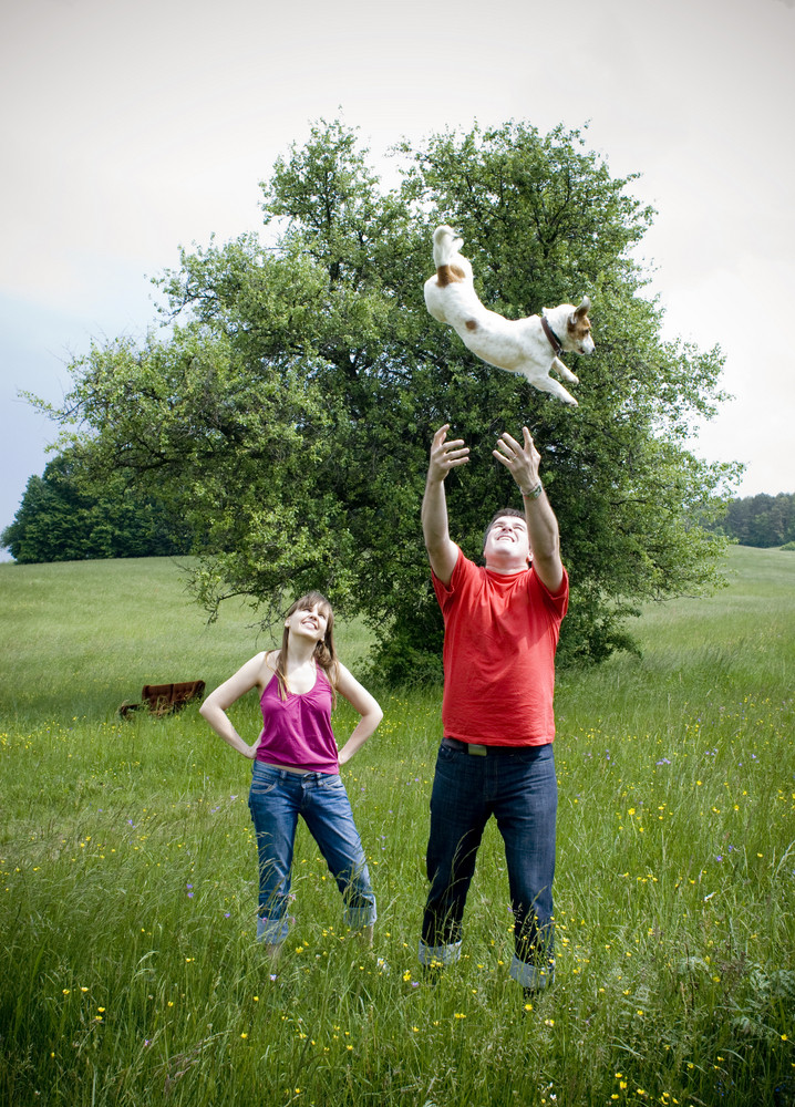 Happy young couple is having fun with their dog in nature