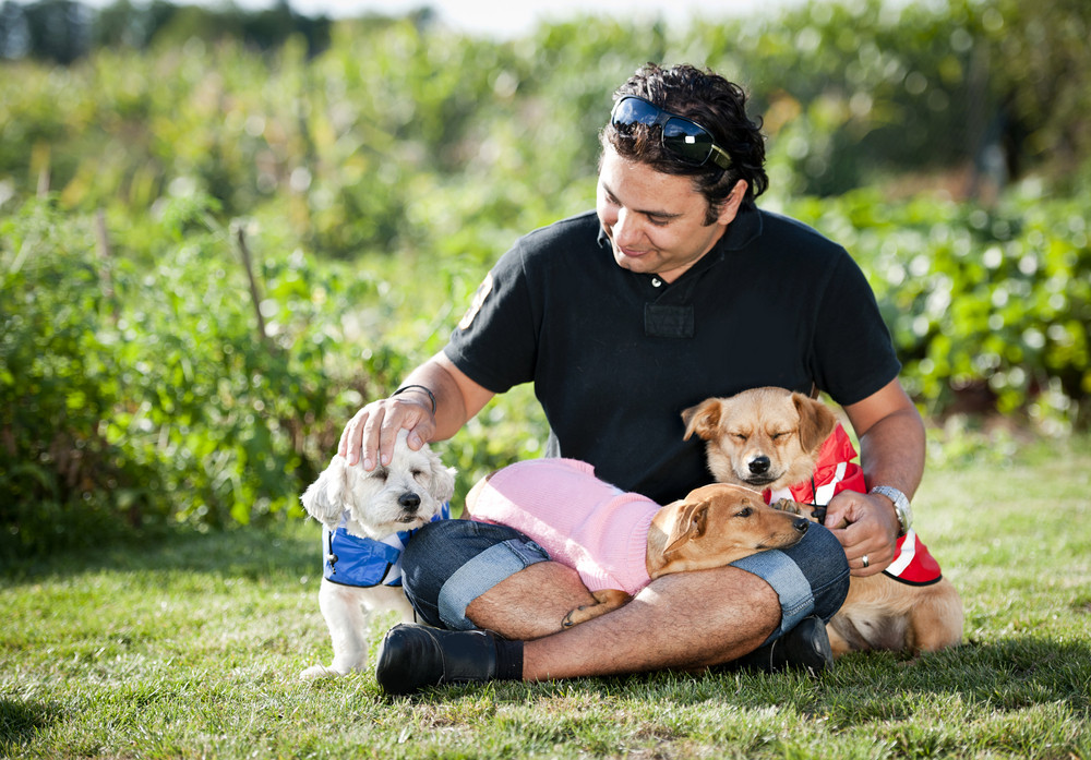 Happy young man is sitting on the grass with his two dogs