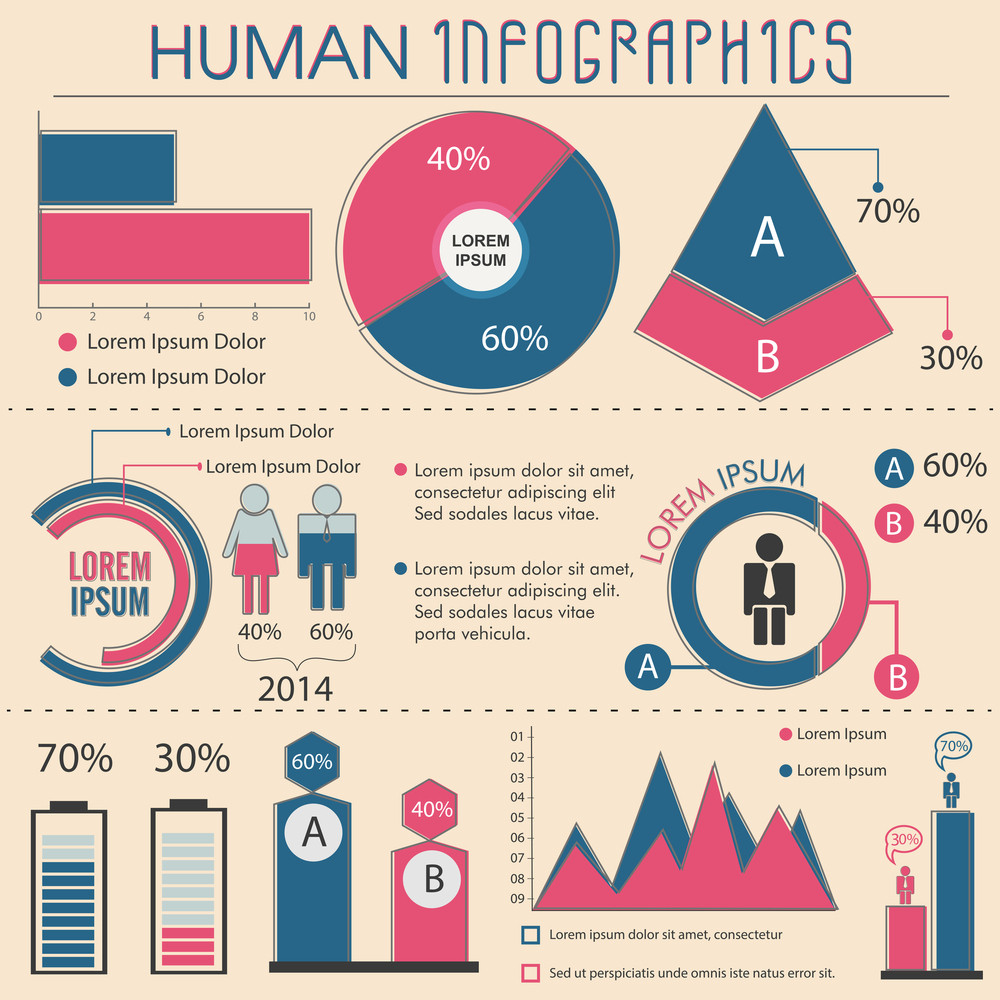 human infographic template layout with statistical graphs and