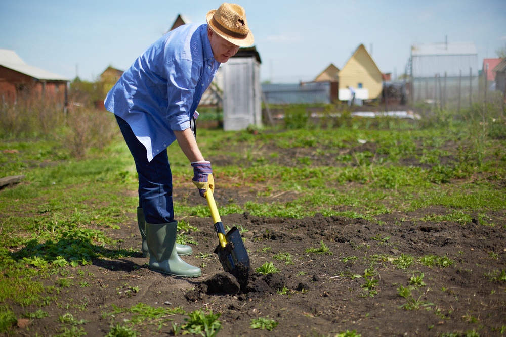 Image of male farmer working in the garden