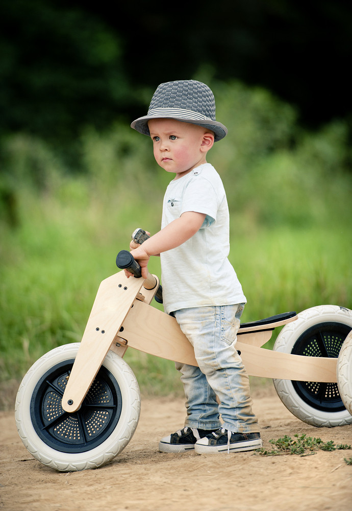 Little boy with wooden tricycle in nature