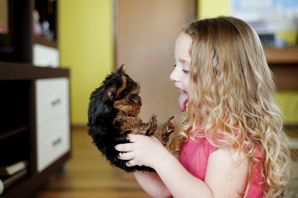 Little girl is playing with her puppy at home