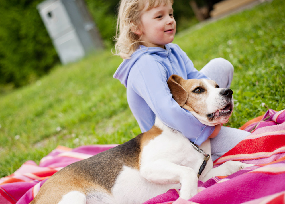 lovely girl playing with her beagle dog in the garden