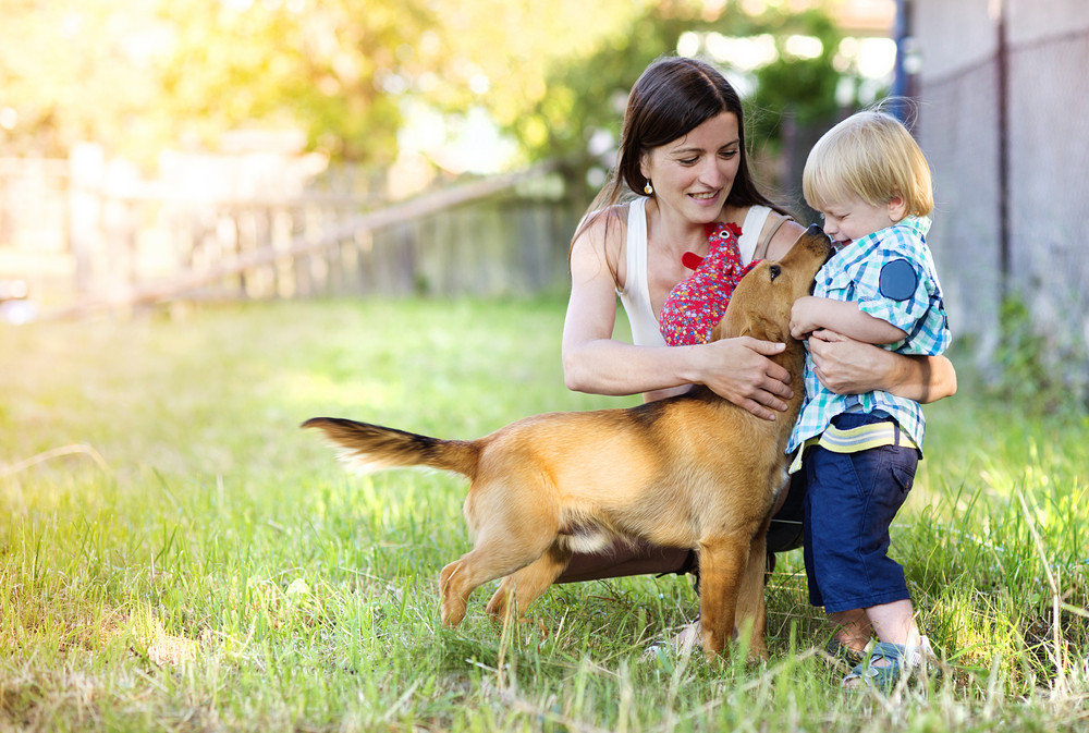 Mother and son playing with dog outside. They are on the farm.
