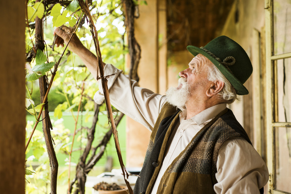Old farmer with beard and hat is working by his farmhouse
