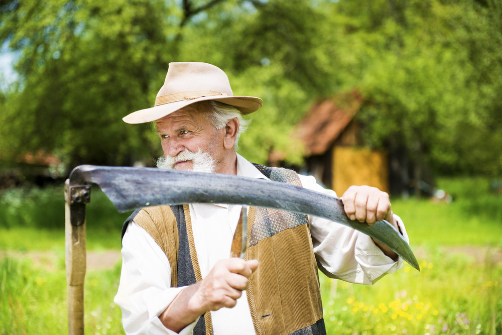 Old farmer with beard sharpening his scythe before using to mow the grass traditionally