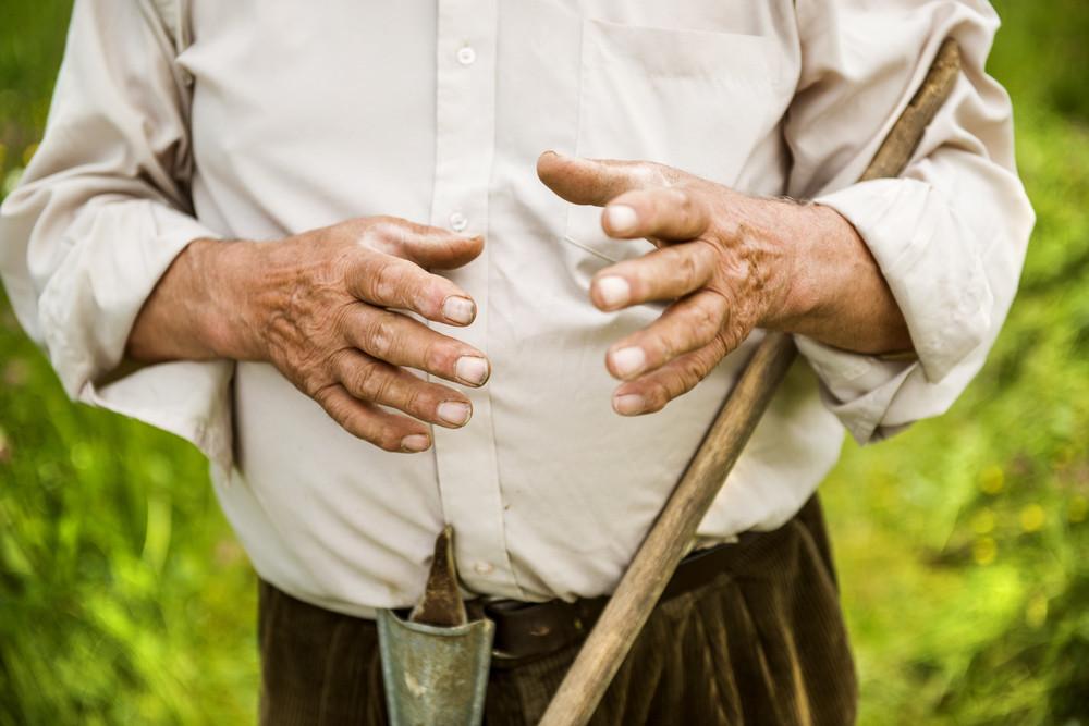 Old farmer with beard working with rake in garden