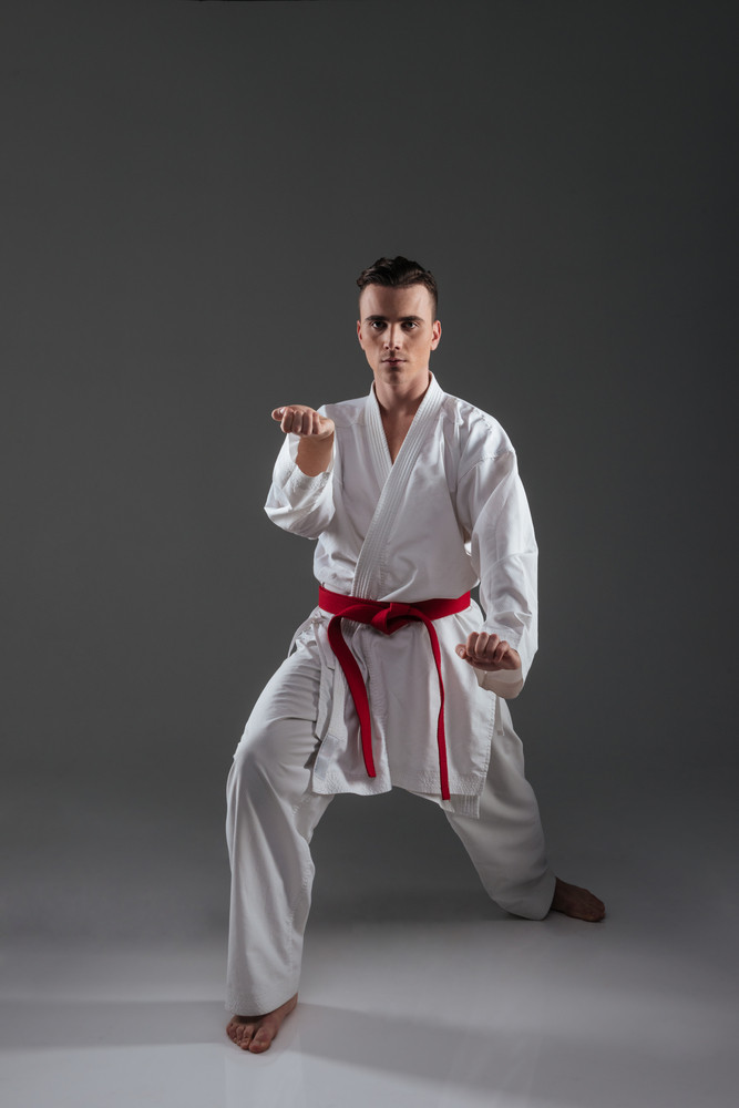 Picture of handsome sportsman dressed in kimono practice in karate isolated over grey background. Looking at camera.