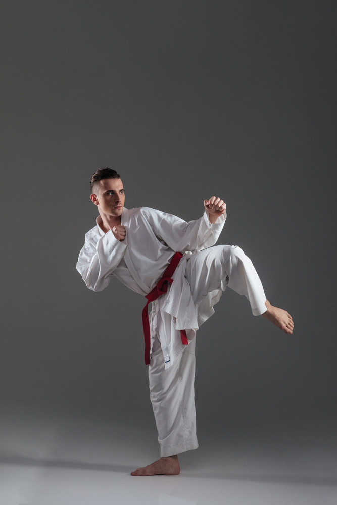 Picture of young handsome sportsman in kimono practice in karate isolated over grey background. Look aside.