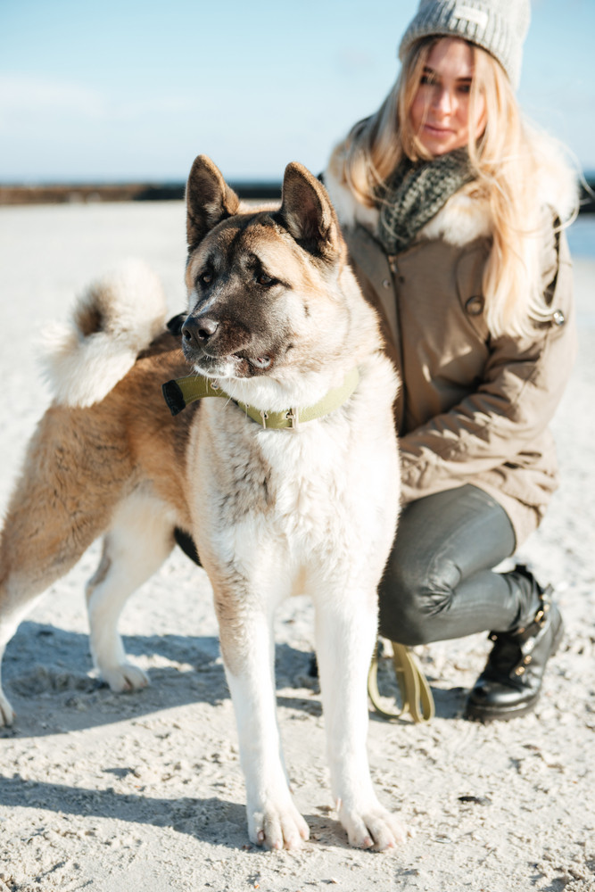 Picture of young pretty lady walks in winter beach with dog on a leash.