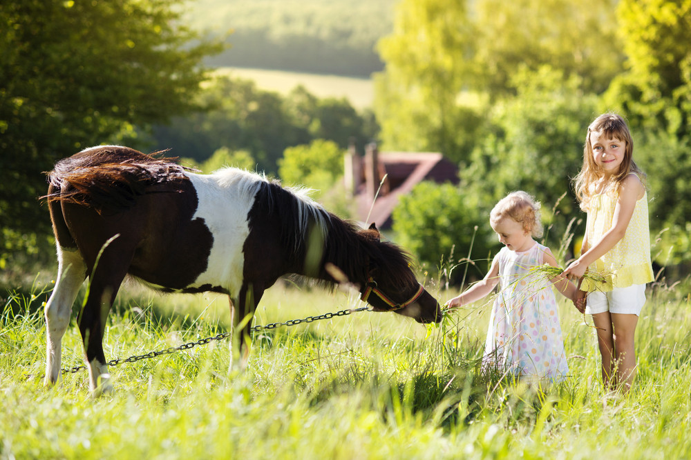 Portrait of two little sisters having fun at countryside outdoors, feeding pony