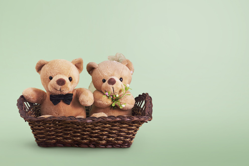 Romantic wedding Bears on the Basket , with clippiing path