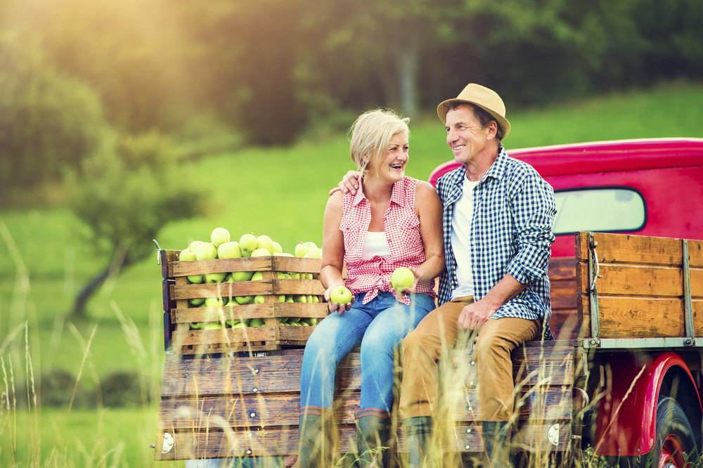 Senior couple sitting in a truck after harvesting apples