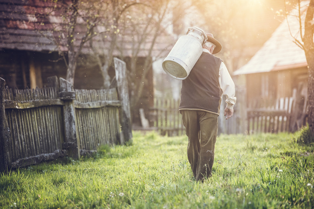 Senior farmer carrying kettle for milk on his back