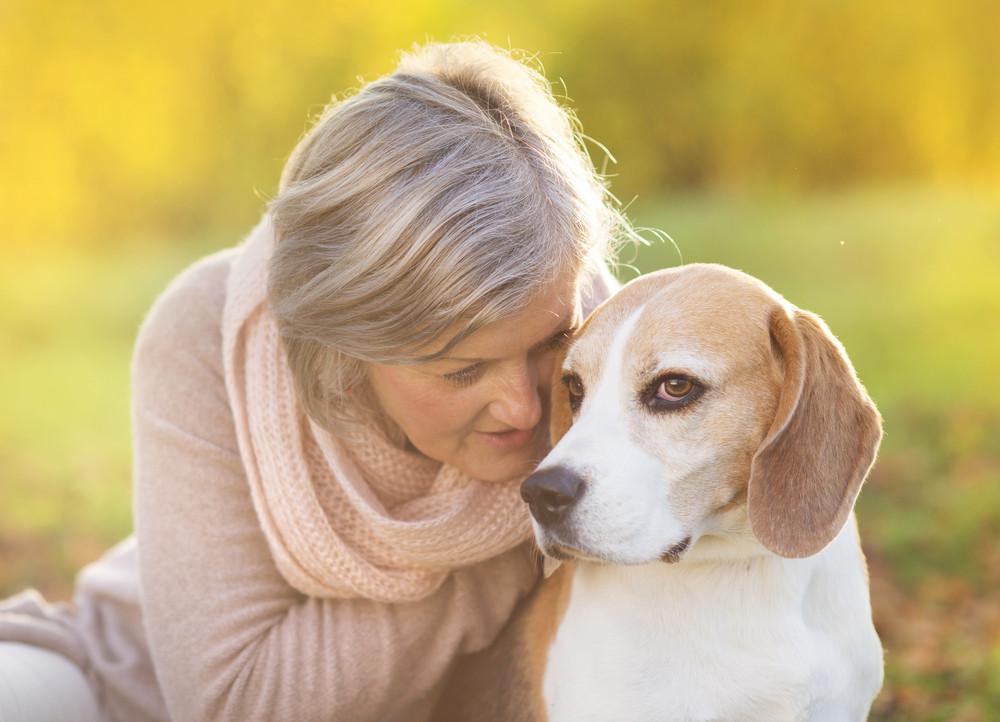 Senior woman hugs her beagle dog in countryside