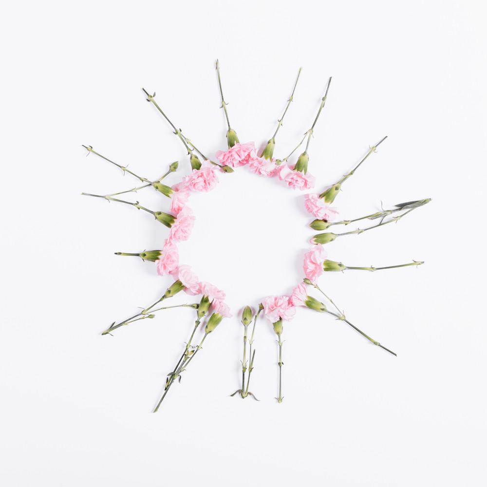 Small Pink Flowers Are In The Shape Of Circle On White Background