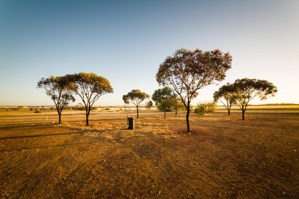 Sunrise in the morning at the Hyden farm ,Western Australia.