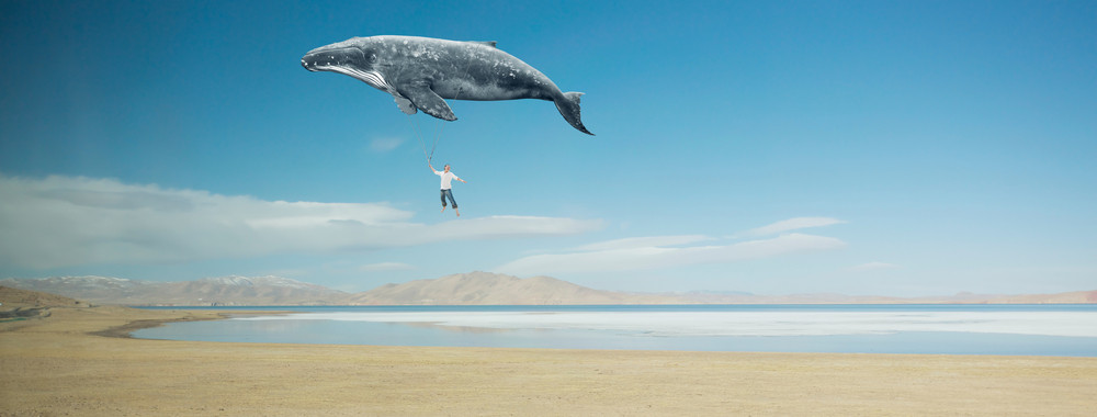 Travel concept. Whale floats in the sky and carrying a happy young asian guy .