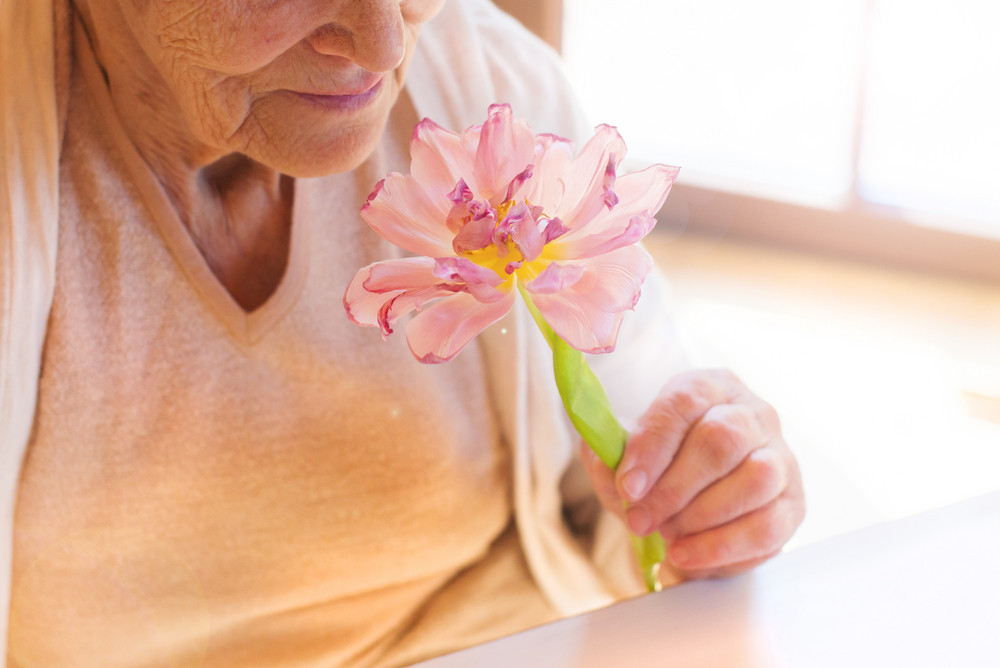 Unrecognizable senior woman holding a pink flower.