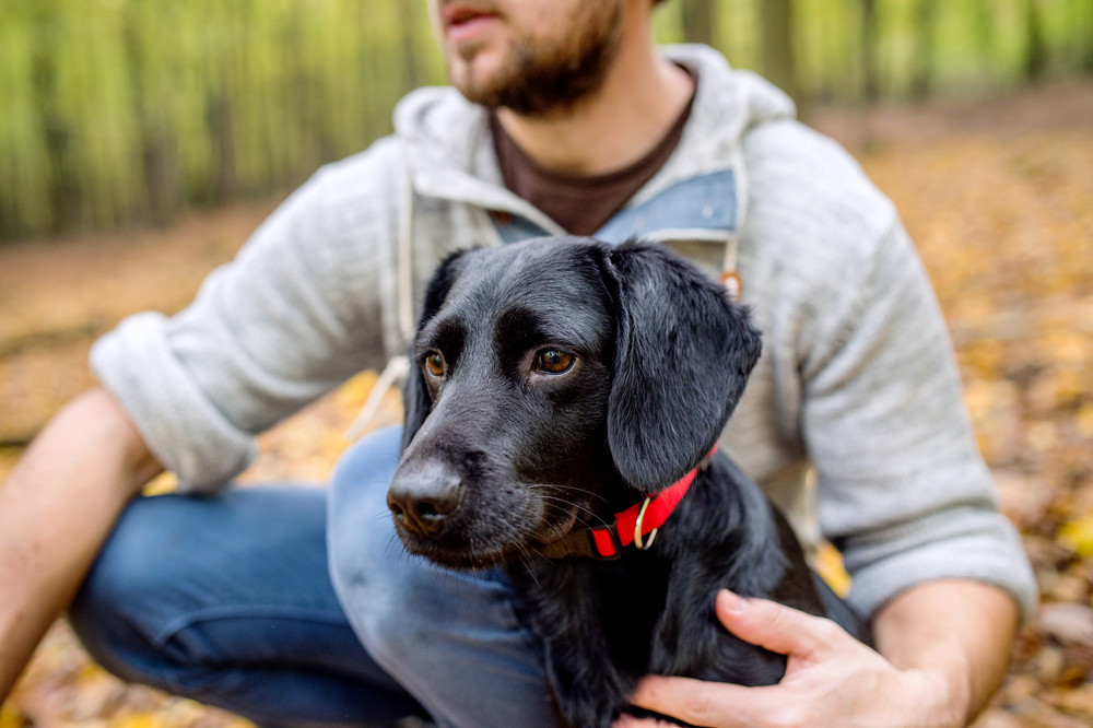 Unrecognizable young hipster man with his black dog in autumn forest