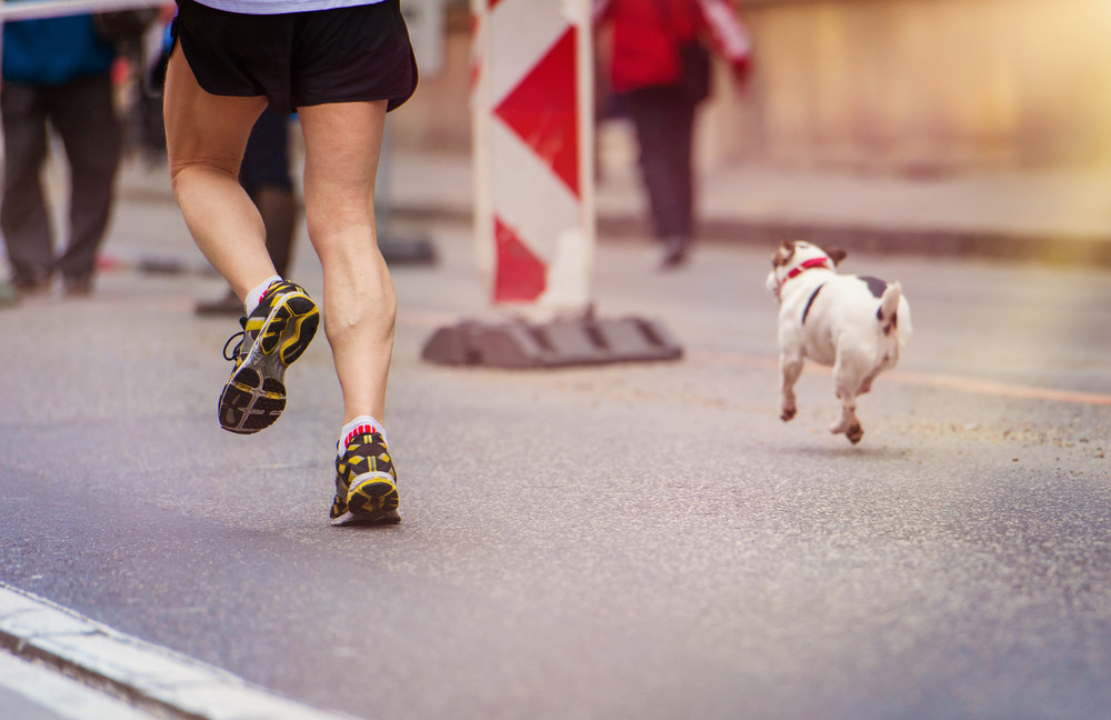 Unrecognizable young runner and a dog at the city race