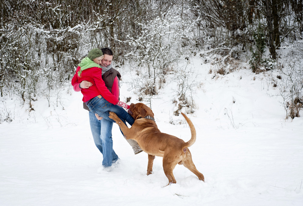 Woman and man are having fun with dog in winter snowy countryside