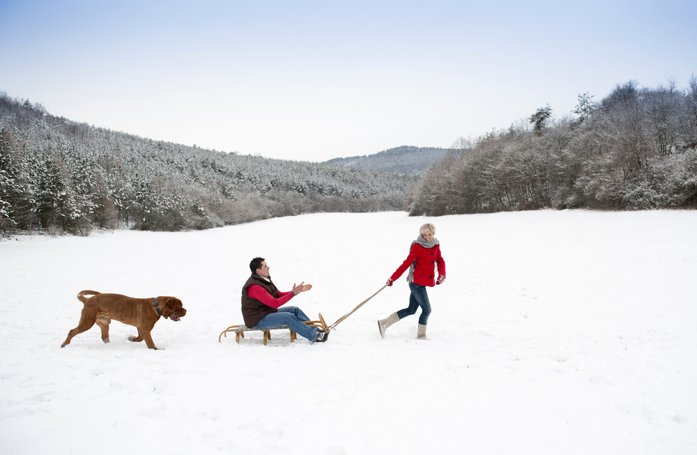 Woman and man are having walk with dog in winter snowy countryside