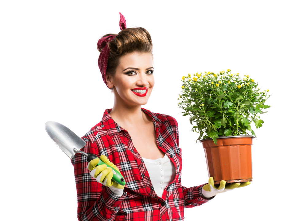Woman in red checked shirt with pin-up make-up and hairstyle holding flower pot with yellow daisies and shovel. Studio shot on white background