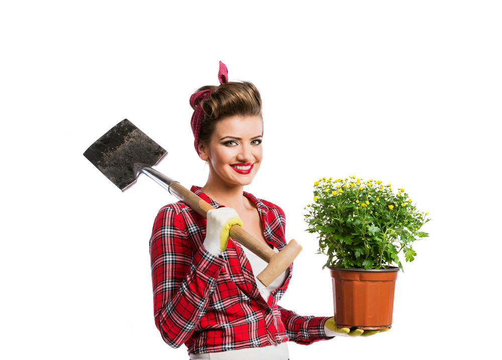 Woman in red checked shirt with pin-up make-up and hairstyle holding flower pot with yellow daisies and spade. Studio shot on white background