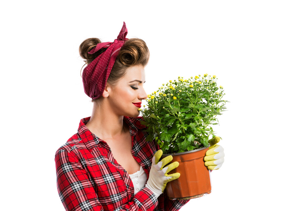 Woman in red checked shirt with pin-up make-up and hairstyle smelling yellow daisies in flower pot. Studio shot on white background