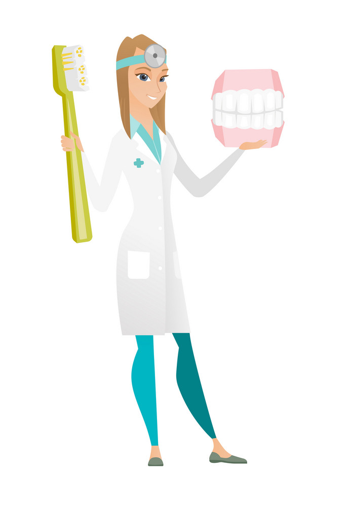 Young caucasian dentist holding dental jaw model and a toothbrush in hands. Happy female dentist showing dental jaw model and toothbrush. Vector flat design illustration isolated on white background.