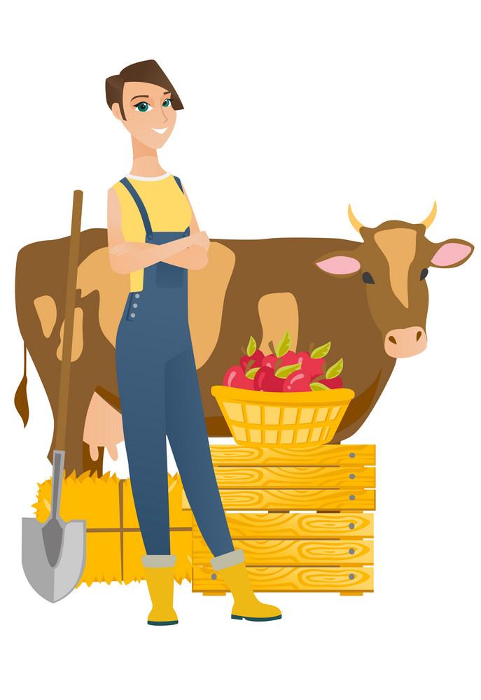 Young caucasian farmer standing on the background of cow, shovel, crates and basket of apples. Farmer standing with crossed arms near cow. Vector flat design illustration isolated on white background.