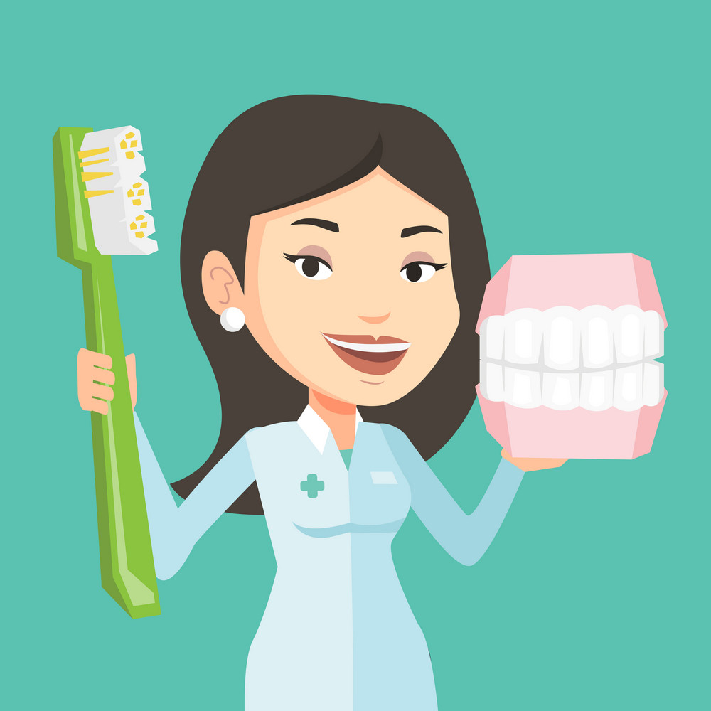 Young caucasian female dentist holding dental jaw model and a toothbrush in hands. Friendly female dentist showing dental jaw model and toothbrush. Vector flat design illustration. Square layout.