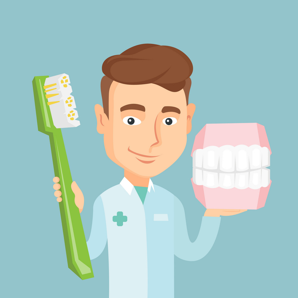 Young caucasian happy dentist holding dental jaw model and a toothbrush in hands. Friendly smiling dentist showing dental jaw model and toothbrush. Vector flat design illustration. Square layout.