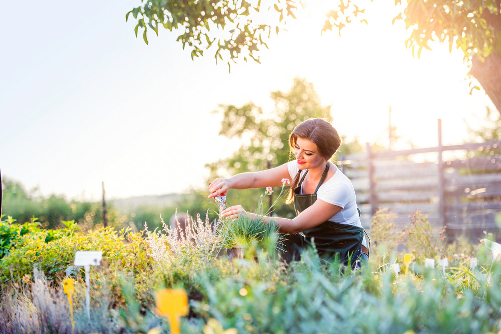 Young gardener cutting little flower plant, green sunny nature, spring garden