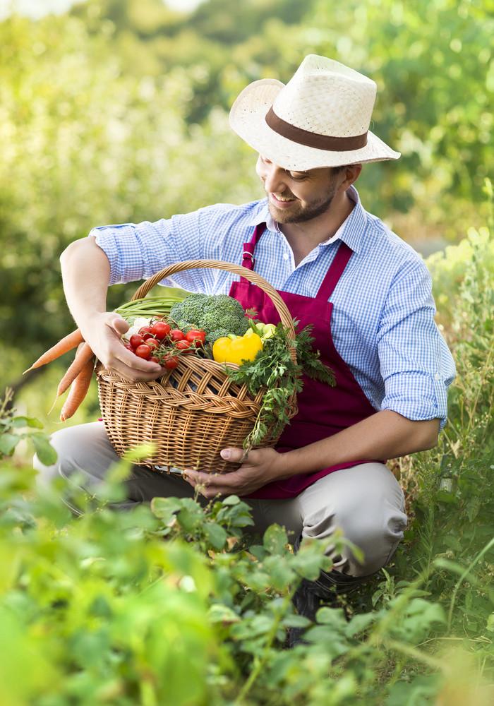 Young male gardener working in the garden