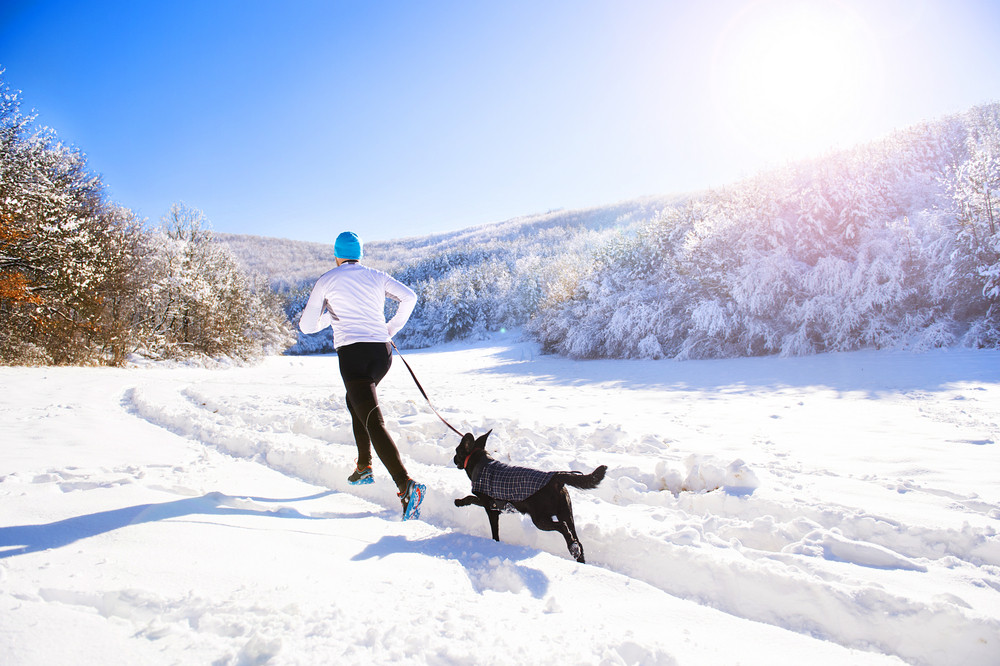 Young sportsman jogging with dog outside in sunny winter park