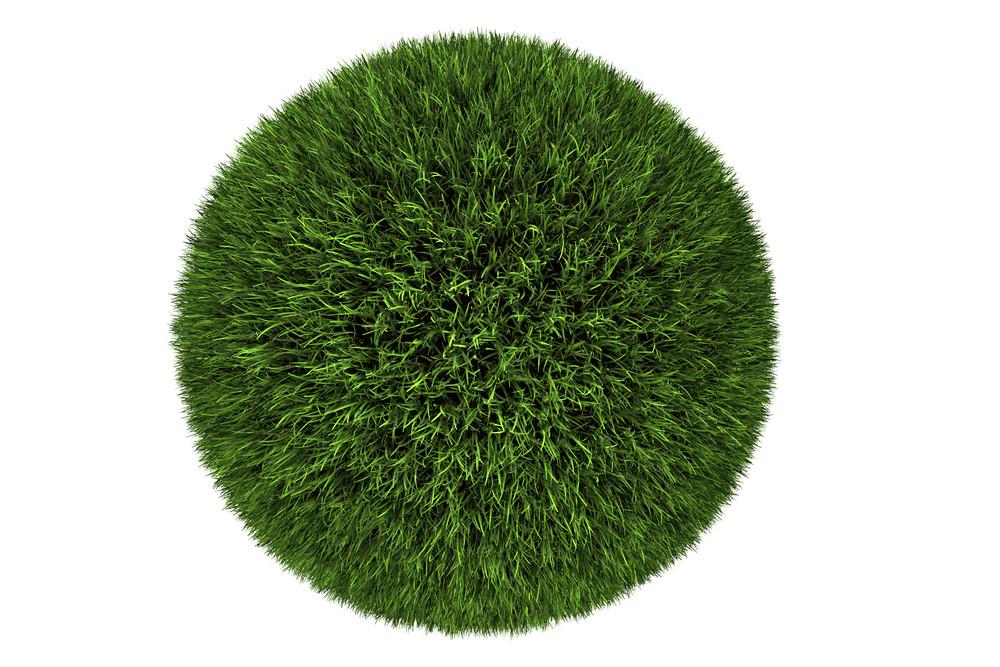 Grass Ball - Glassy Globe