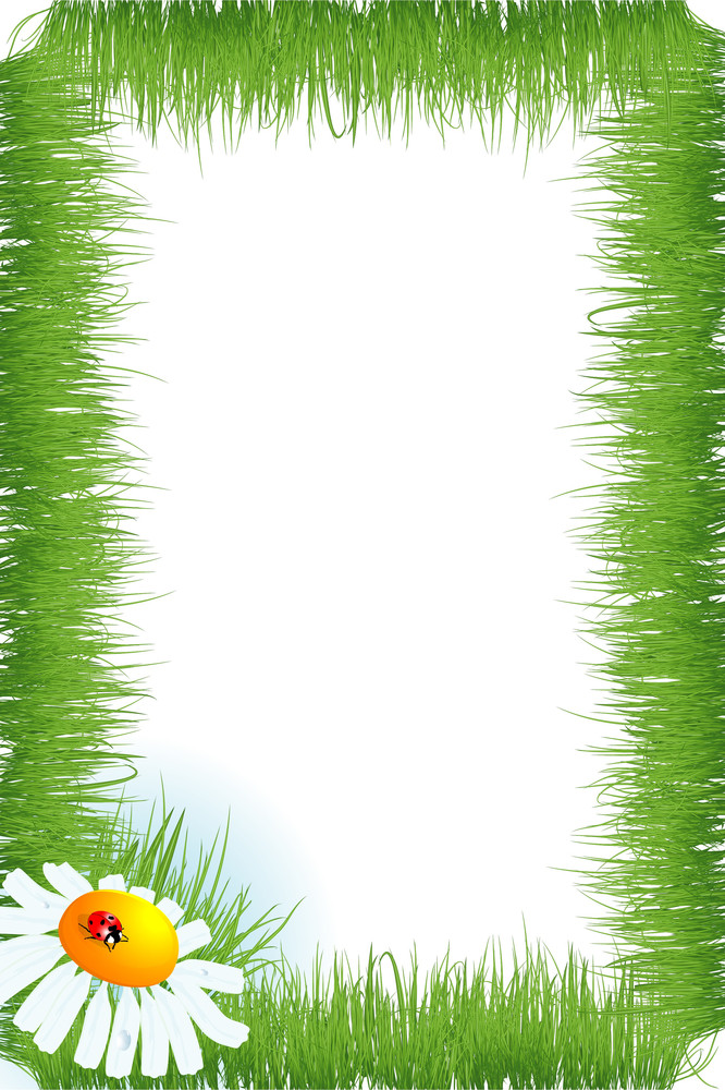 Grass Frame. Vector.