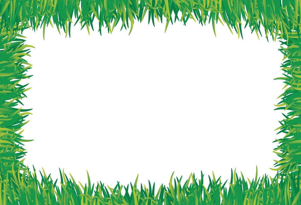 Grass Frame. Vector.