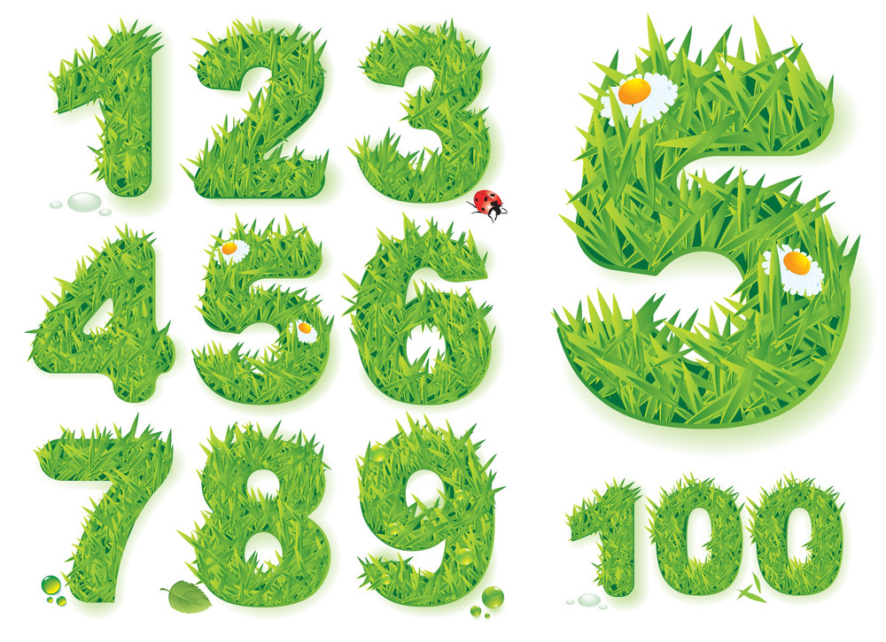 Grass Numbers. Vector.