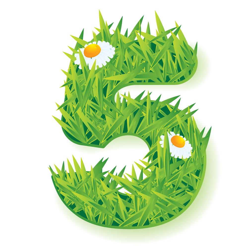 Grass Vector Numbers. Five.