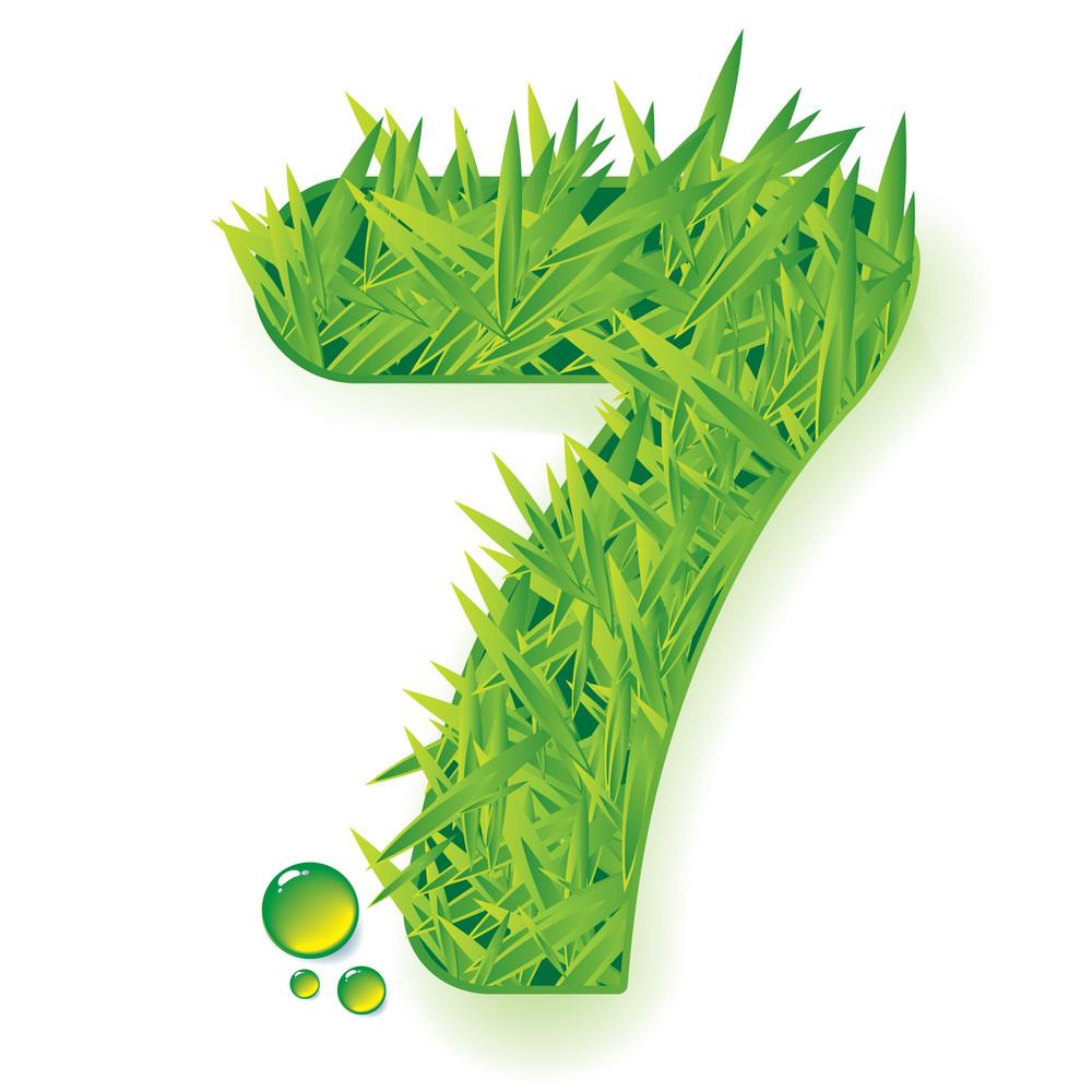 Grass Vector Numbers. Seven.