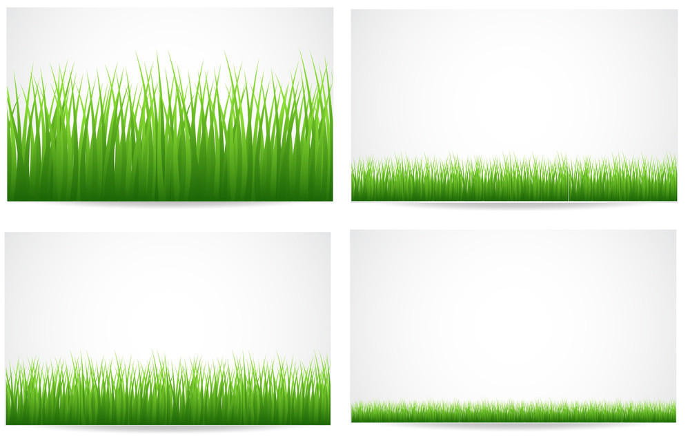 Grassline Backgrounds Vectors