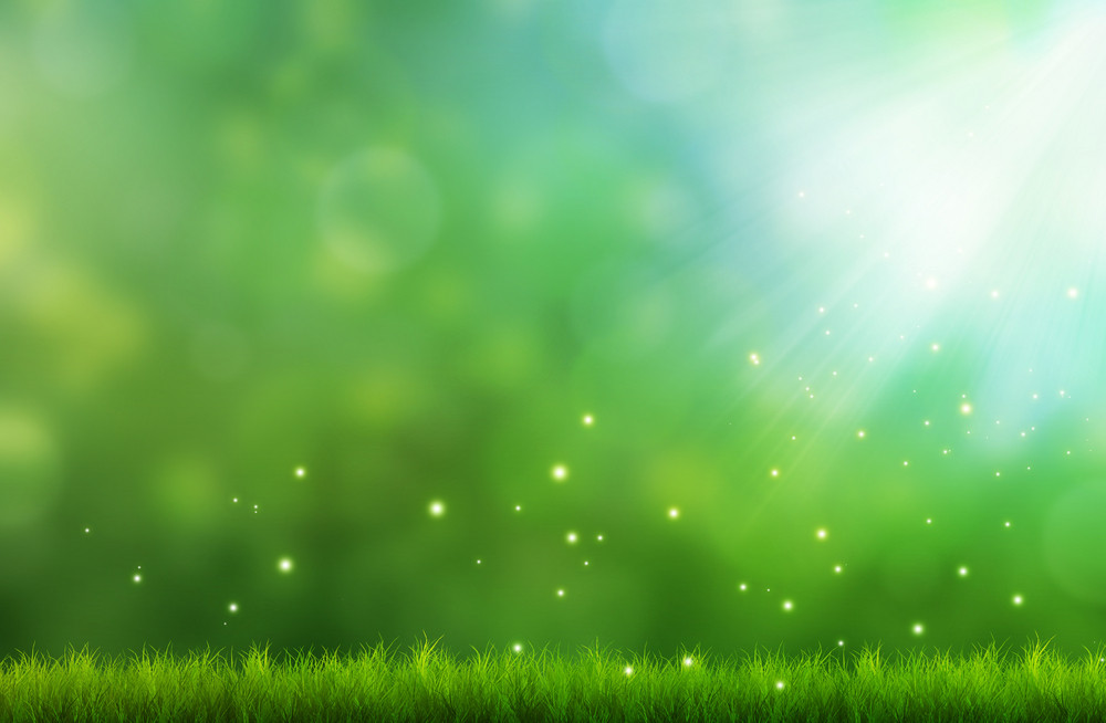 Grassy field with bokeh and blurred background