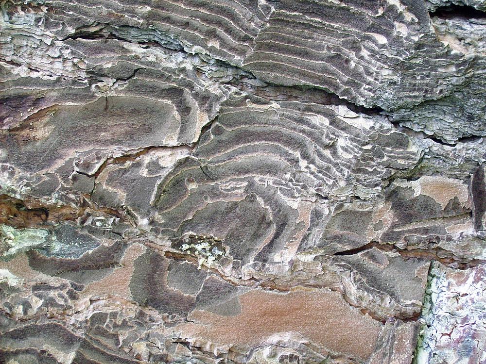 Gravel_texture
