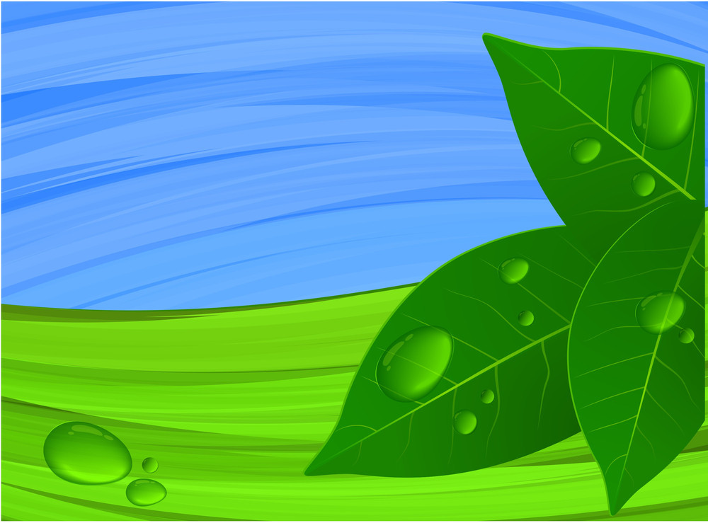 Green And Blue. Vector.