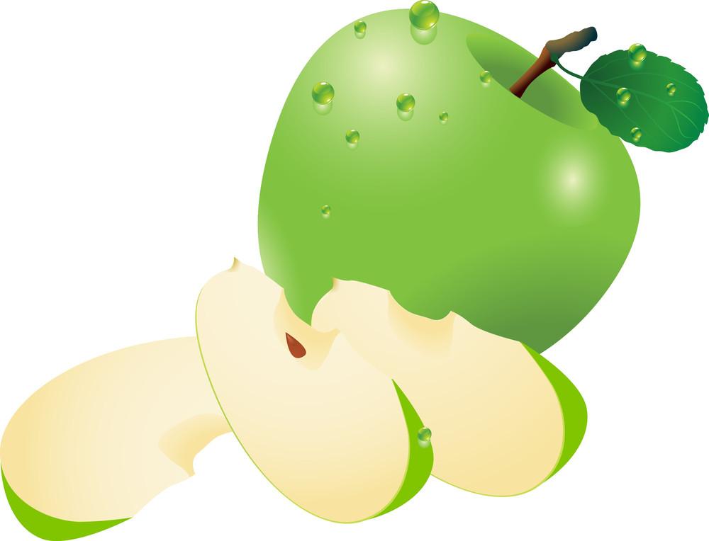 Green Apple. Vector